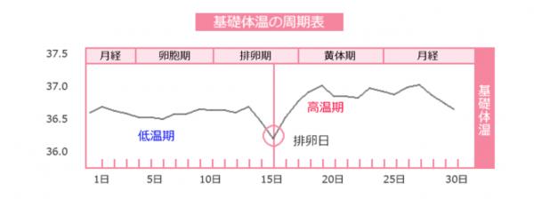 基礎体温の周期表グラフ